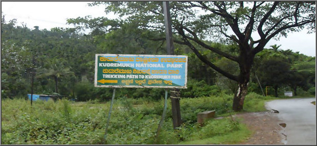 Kudremukh-national-park-information