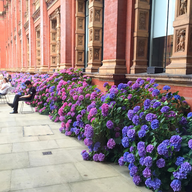 Hydrangeas | V & A Museum | London | Chichi Mary Blog