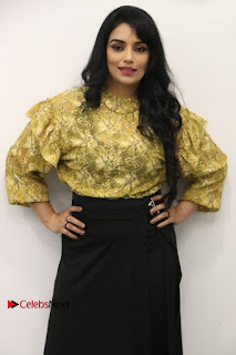 South Indian Actress Shweta Menon Stills at Inayathalam Audio Launch Stills  0015.jpg