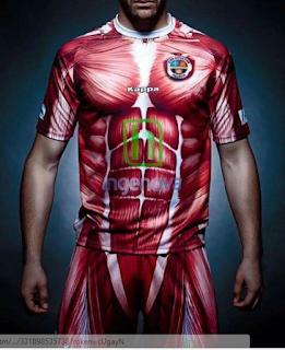 CD Palecia shirt met spieren