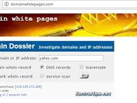 Trik Mengetahui Informasi Domain Sebuah Situs
