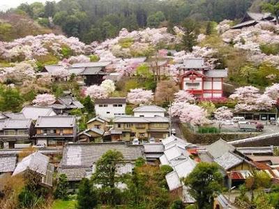 Thành phố Nara Nhật bản