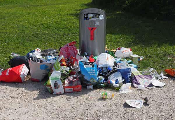 sampah kampus