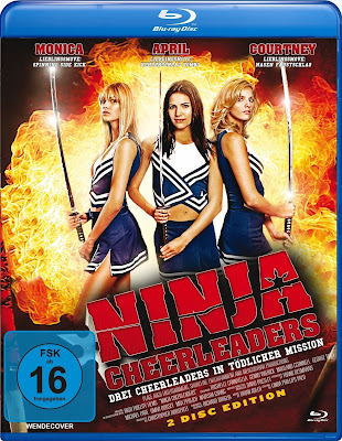 Ninja Cheerleaders 2008 Dual Audio BRRip 480p 250Mb x264