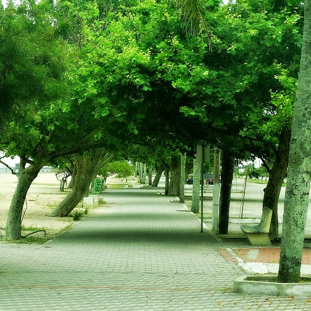 Calçadão arborizado da Praia do Laranjal, em Pelotas