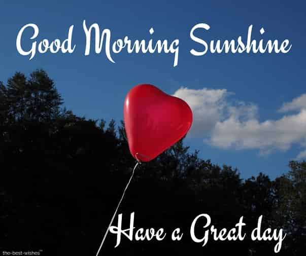 good morning sunshine have a great day