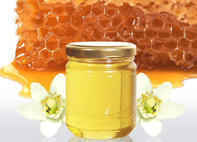 Το μέλι απο άνθη πορτοκαλιάς αναδείχθηκε ως Εθνικό μέλι της Ιταλίας για το 2016