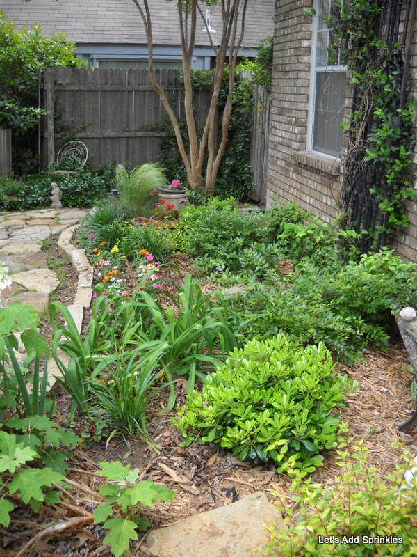 Let S Add Sprinkles How To Re Design Your Landscape