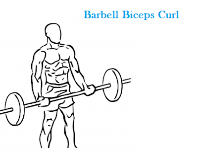 Build Bigger Biceps Fast