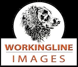 www.workinglineimages.co.uk