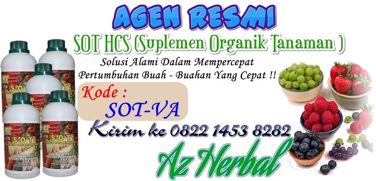 Jual SOT HCS (Suplemen Organik Tanaman ) Asli