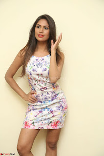Nishi Ganda stunning cute in Flower Print short dress at Tick Tack Movie Press Meet March 2017 045.JPG