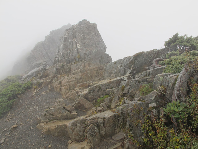 IMG 5968 - 台中登山│台灣第二高峰,雪山主峰、東峰兩天一夜攻頂!這兩天是我最難熬的一夜