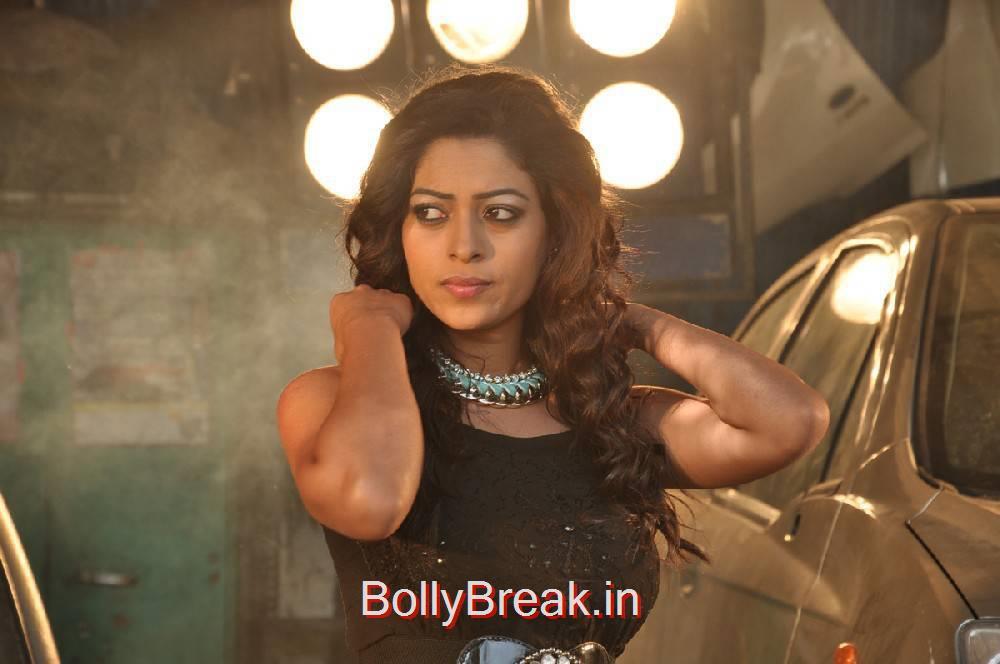 Anjali Rao Stills, Anjali Rao Hot HD allpapers 2000 Crores Black Money Movie