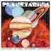 |Album Reviews| - O cosmos de Sufjan Stevens e companhia