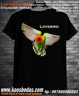 Kaos Lovebird 80