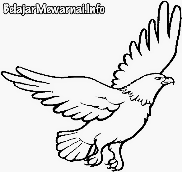 Soaring eagle clipart black and white