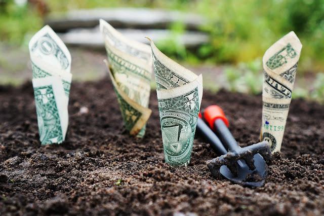 Ternak Akun Kloningan, Metode Penipuan Online Bidang Investasi