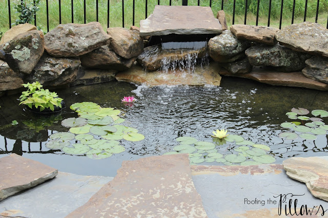 patio, outdoor spaces, backyard pond, pond and waterfall