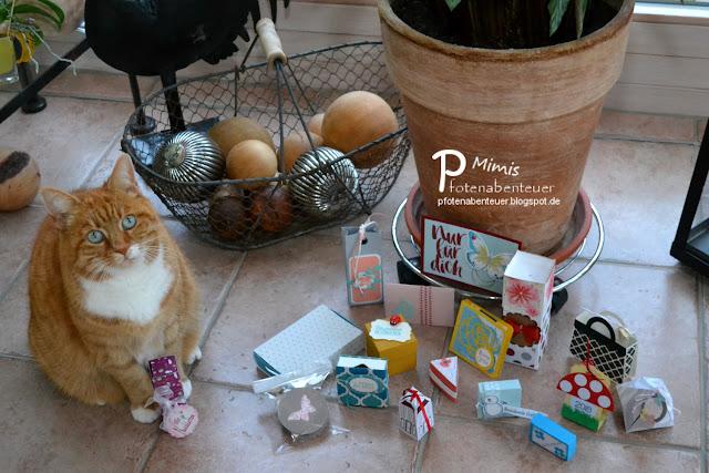 Katze Mimi und ihre Swaps