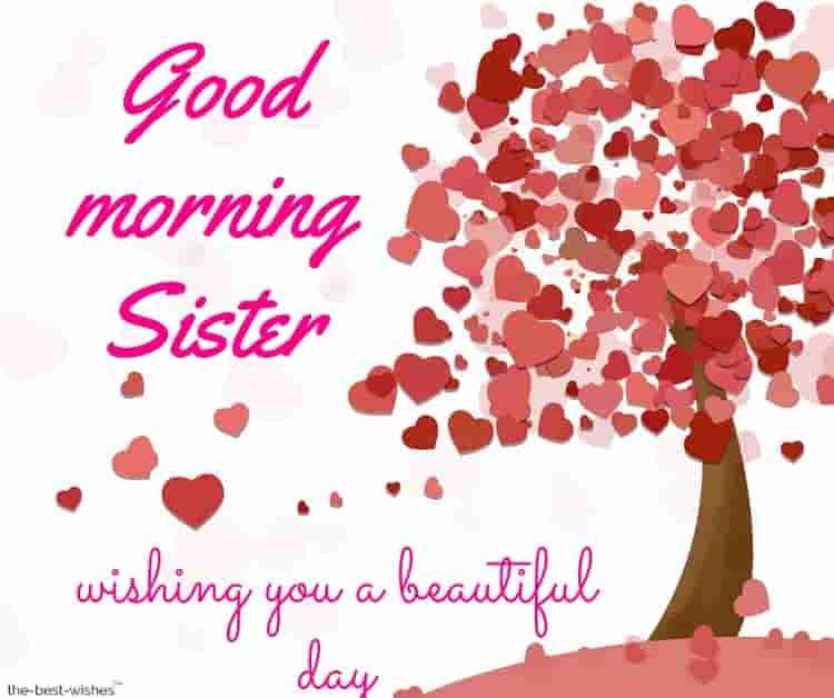 good morning sister wishing you a beautiful day