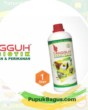 Tangguh  (Probiotik Peternakan & Perikanan)