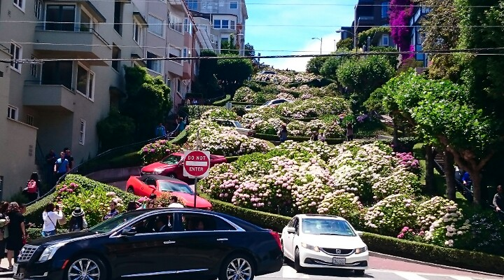 Cars navigating Crooked Street Lombard Street San Francisco