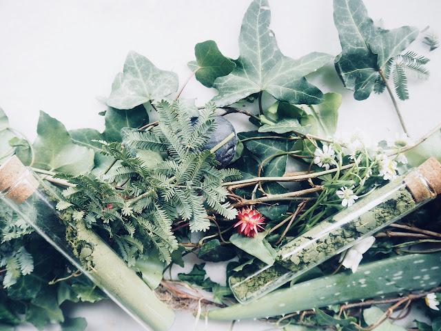 photo-loreal-professionnel-botanea-coloracion-natural-eco