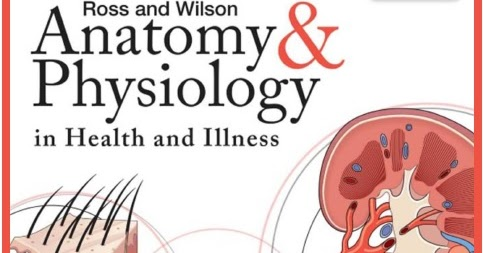 And edition 11th and wilson anatomy physiology pdf ross