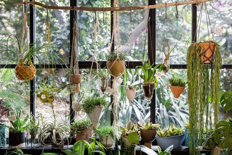 maceteros colgantes de macrame para jungla urbana (urban jungle)