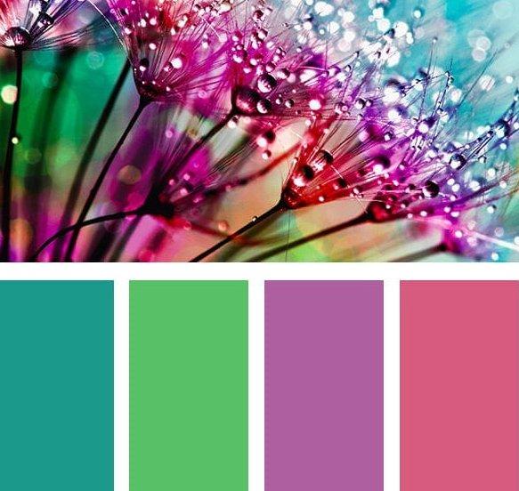 100 Χρωματικές Παλέτες για να επιλέξετε διακοσμητικούς συνδυασμούς