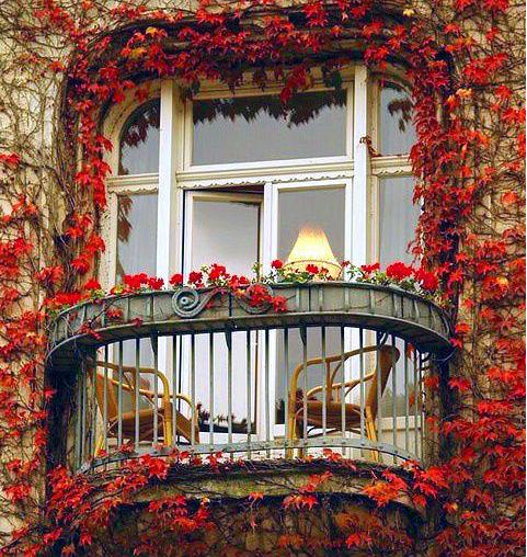 Ventana en otoño