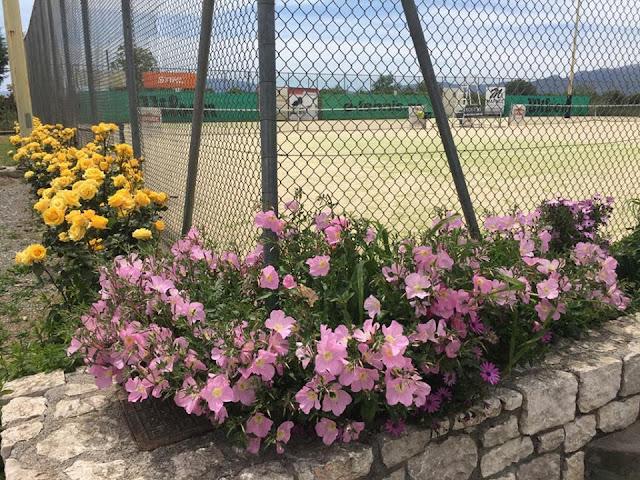 Προπαιδικό Ενωσιακό Πρωτάθλημα Juniors κάτω των 10 ετών στο Athlisis Tennis Club