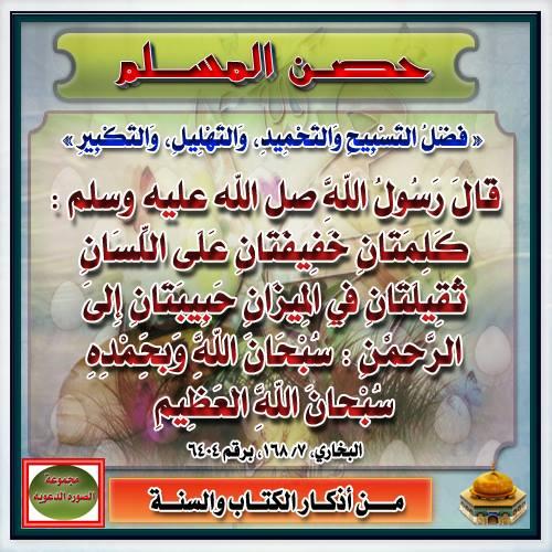 ناروتو شيبودن 424 مترجم عربي