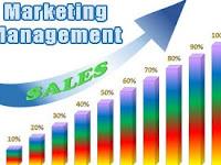The Advantages of Marketing Management