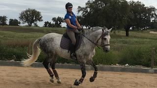 Portugal, Riitta reissaa, Horsexplore, Pero Viegas, ratsastusmatka, working equitation