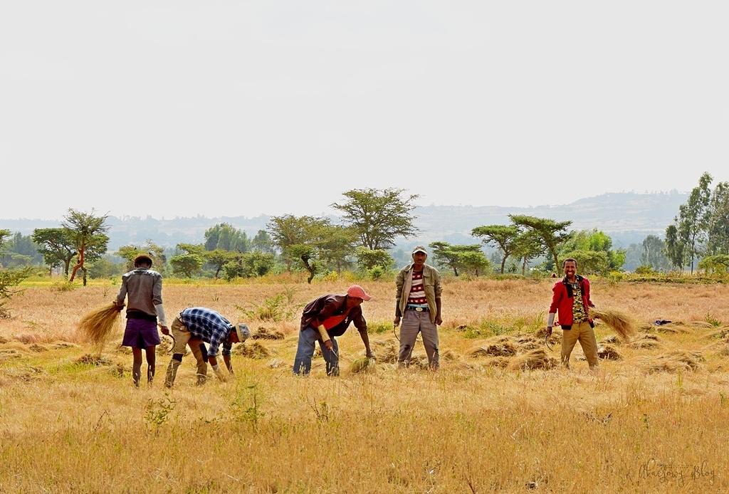 Podróż po Etiopii - cz. 4 - jedziemy nad jezioro Ziway.