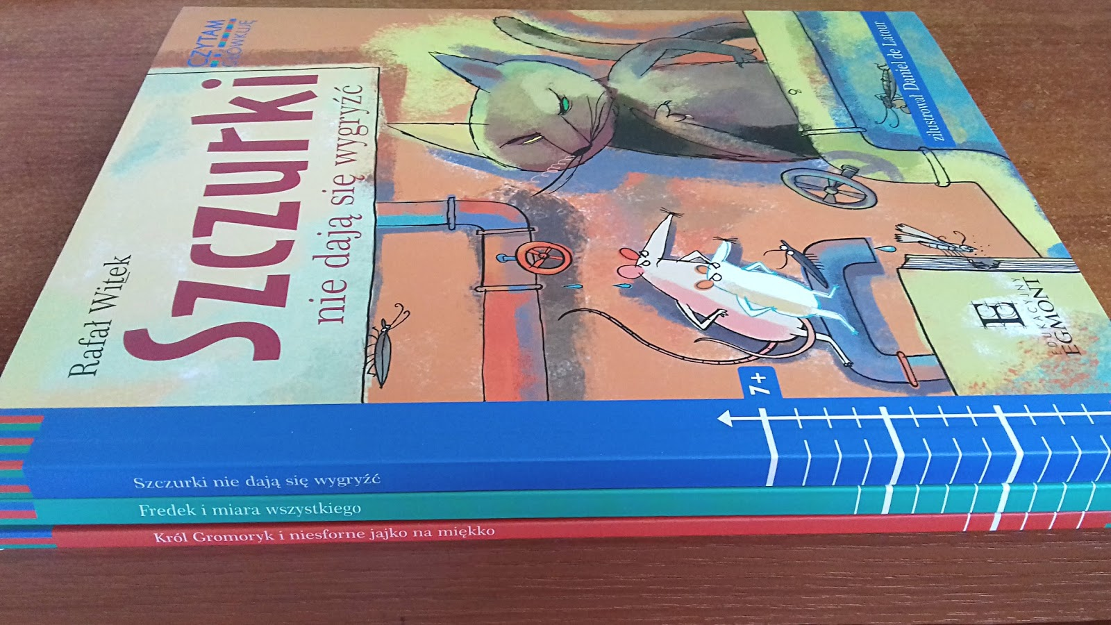 Czytam i główkuję- książeczki aktywizujące dla dzieci.