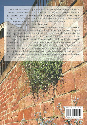 Back cover of Erbe di città.