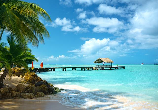 Trinidad et Tobago : îles des Caraibes , paysage