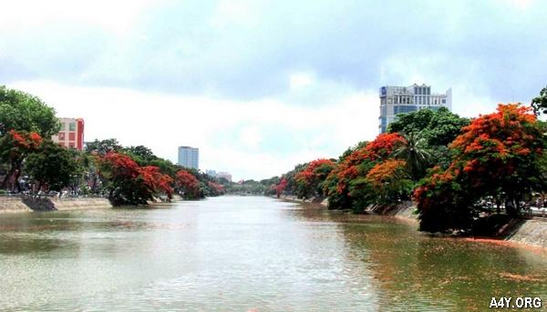 [TOP] Thơ ngắn ca ngợi Hải Phòng - thành phố Cảng rợp màu hoa phượng vĩ