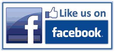 facebook page like button on blogs