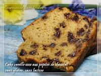 Cake vanille coco aux pépites de chocolat sans gluten sans lactose