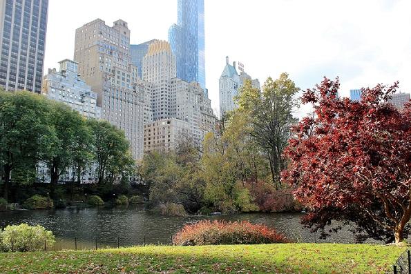New York-bloggen fyller sex år!