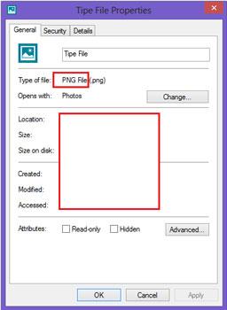 tipe dan jenis file
