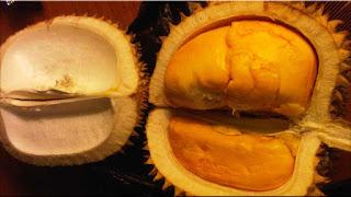 gambar buah lai