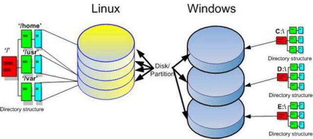 Term paper linux versus windows