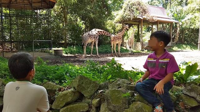 Masih menarikkah Zoo Melaka and Night Safari?