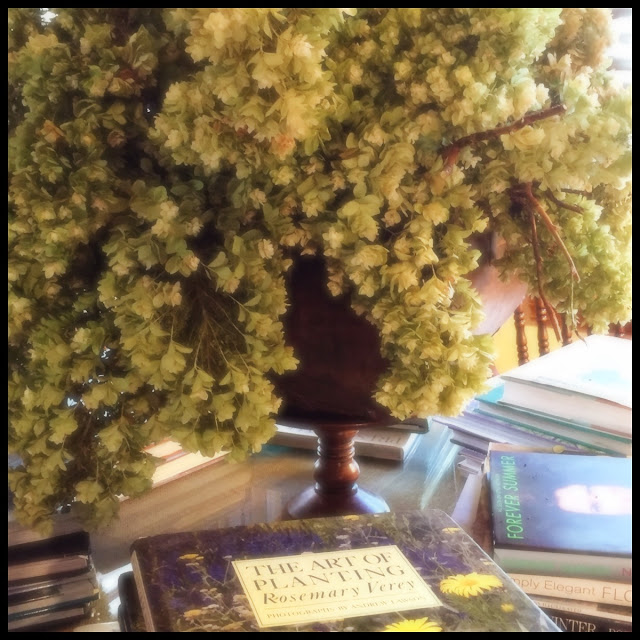 Papery and delicate dried bouquet of hydrangeas in wooden true sits in the middle of a large round book table.