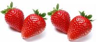 Strawberry meaning in English, hindi, telugu,tamil,marathi,Gujrathi,Malayalam,Kannada